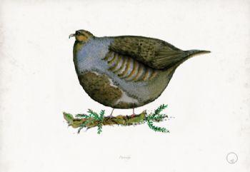Partridge - artist signed print
